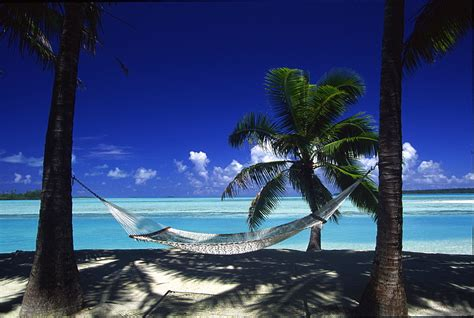 """High Quality Stock Photos of """"cook islands"""""""