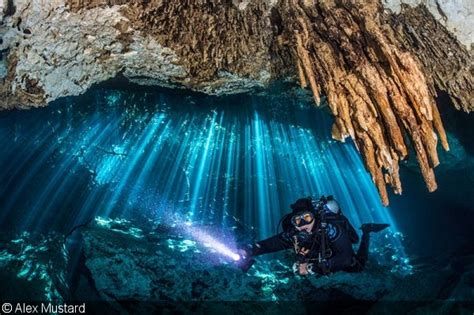 Balancing Ambient and Artificial Light in Underwater