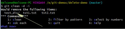 Git clean: 4 Examples to remove untracked files