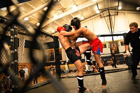 Learning the Techniques that are the building blocks of MMA