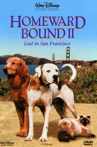 Watch Homeward Bound II: Lost in San Francisco 1996 full