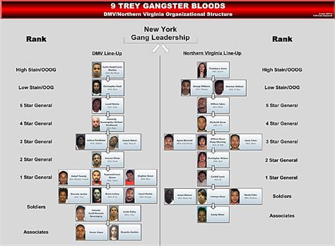 7 Fauquier men convicted on federal gang charges